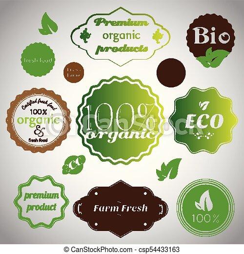 Un conjunto de productos orgánicos y agricultores frescos - csp54433163