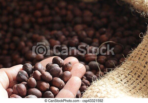 Frijoles de café - csp43321592