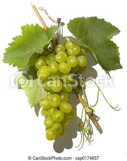 Grape cluster - csp0174657