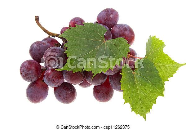 grape isolated - csp11262375