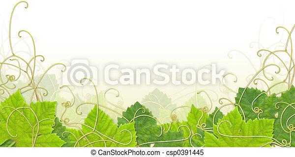 Grape leaf footer - csp0391445
