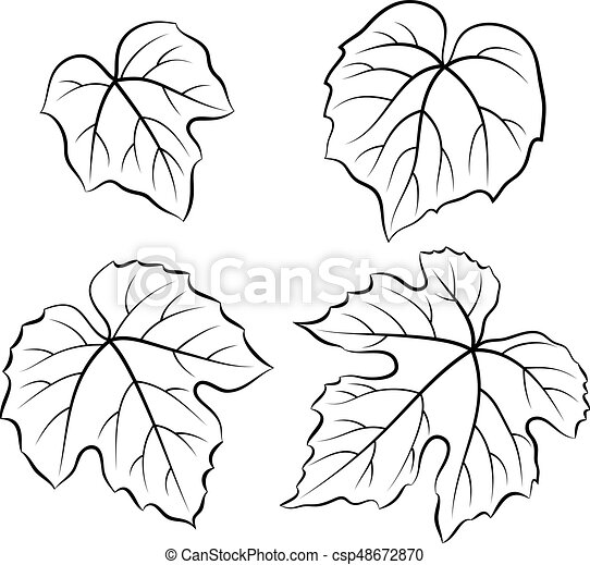 Grape Leaves Pictograms Set Of Plant Pictograms Grape Leaves Black On White Vector Canstock