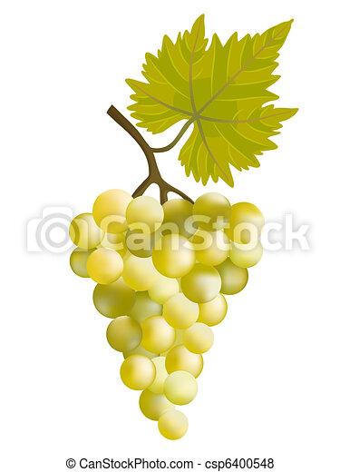 grape., soleado - csp6400548
