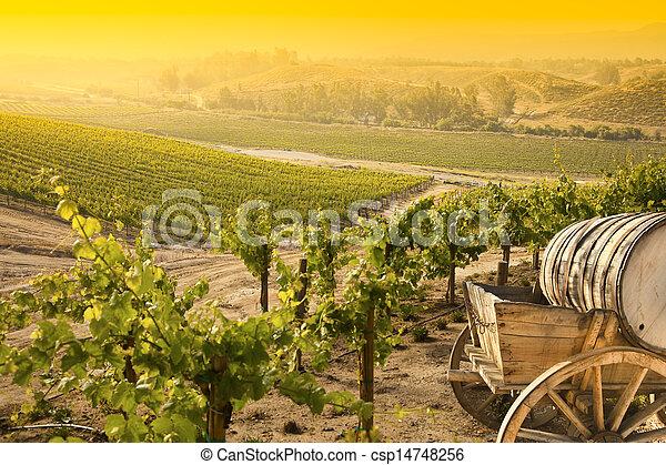 Grape Vineyard with Old Barrel Carriage Wagon  - csp14748256