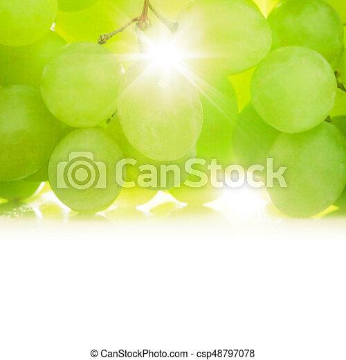 Grapes against the sun - csp48797078