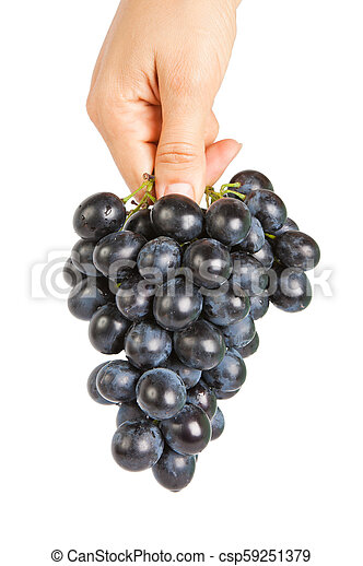 Grapes in a female hand isolated on the white background - csp59251379