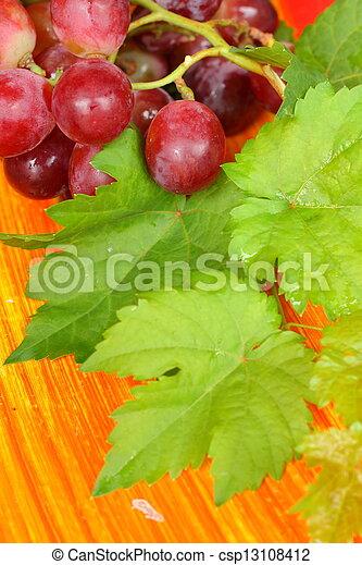 Grapes - csp13108412