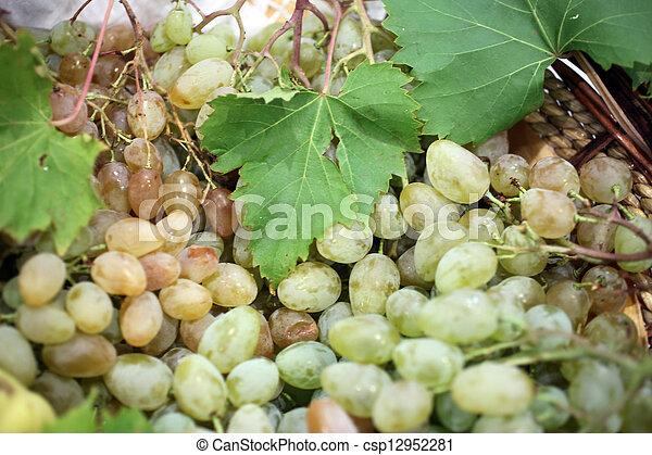 Grapes - csp12952281