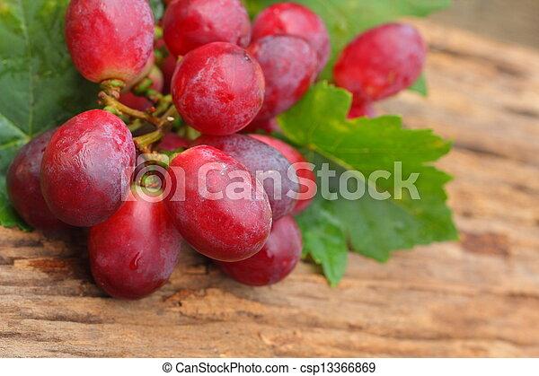 Grapes - csp13366869