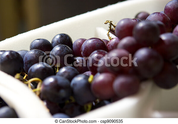 Grapes - csp9090535