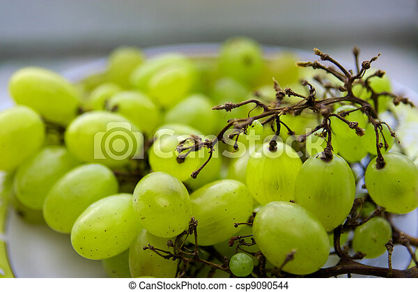 Grapes - csp9090544