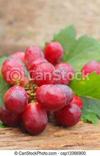 Grapes - csp13366900