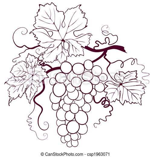 Grapes With Leaves - csp1963071