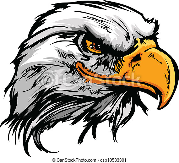 Graphic Head of a Bald Eagle Mascot Vector Illustration - csp10533301