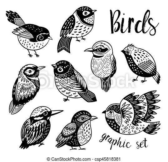 Graphic Set With Hand Drawn Exotic Birds