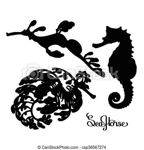 Graphic Vector Seahorse Silhouettes Collection Ocean Vectors