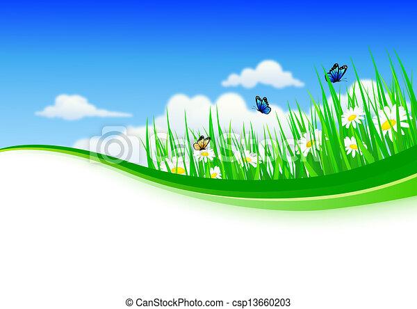 gras, fl, hintergrund, natur - csp13660203