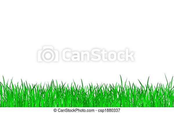 gras, groene, vrijstaand - csp1880337