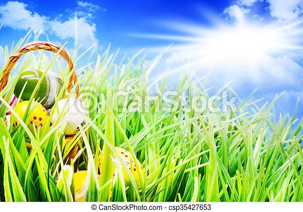 gras, sonnenschein, eier, ostern körbe - csp35427653