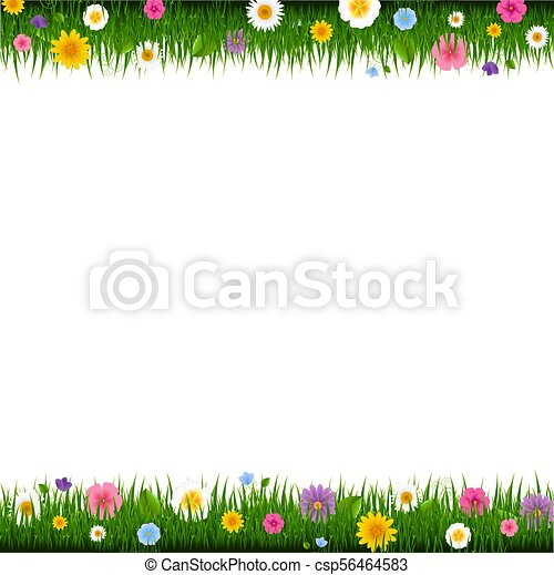 Grass And Flowers Border - csp56464583