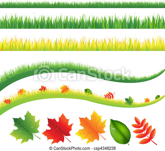 Grass And Leaves - csp4348238