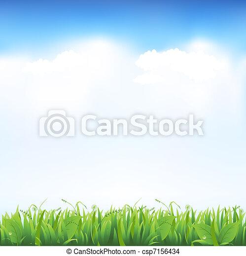 Grass And Sky - csp7156434