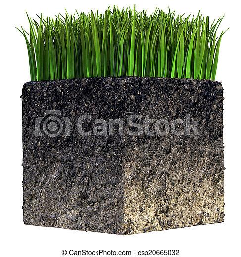 Grass and Soil - csp20665032