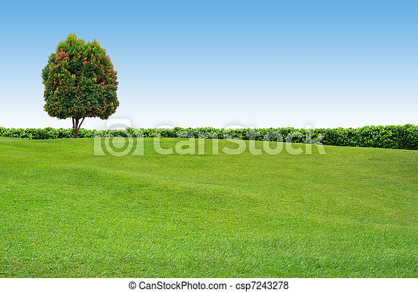 Grass and tree on clear sky - csp7243278