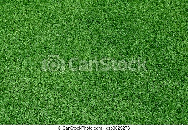 Grass background - csp3623278