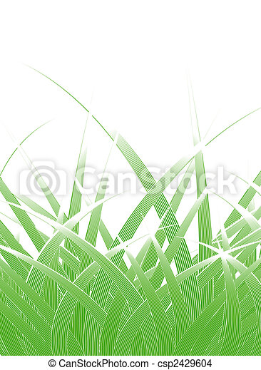 Grass blades - csp2429604