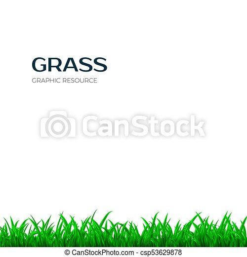grass border horizontal banner with green grass vector illustration isolated on white background https www canstockphoto com grass border horizontal banner with 53629878 html