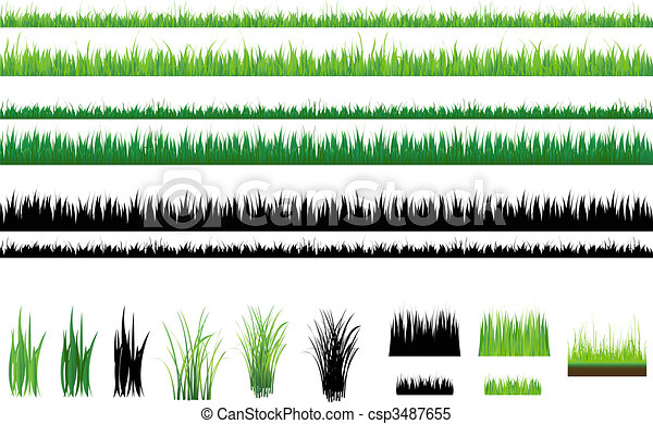 Grass collection, Isolated On White - csp3487655