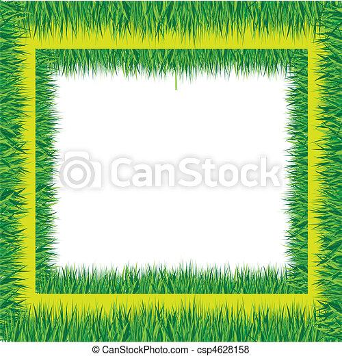 grass  - csp4628158