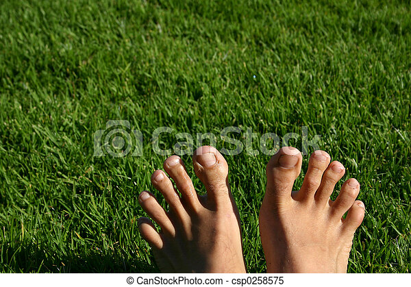 Grass Feet Series - csp0258575