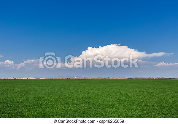 grass field from above. Grass Field With Clouds And Sky - Csp46265859 Grass From Above T