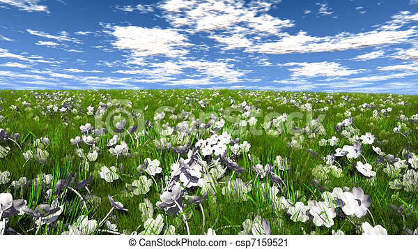 Grass Field With Flowers To Grass Field With White Flowers Flowers