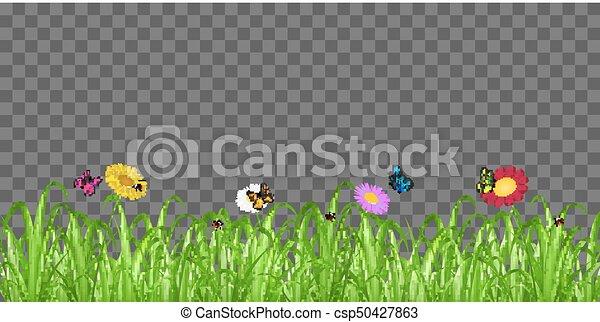 grass transparent background. Grass Flower Butterfly On Transparent Background - Csp50427863