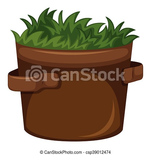 Grass growing in the pot - csp39012474