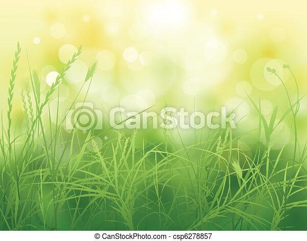 grass - csp6278857