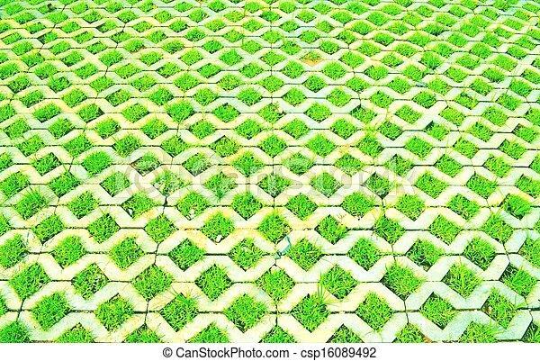 Grass in concrete - csp16089492