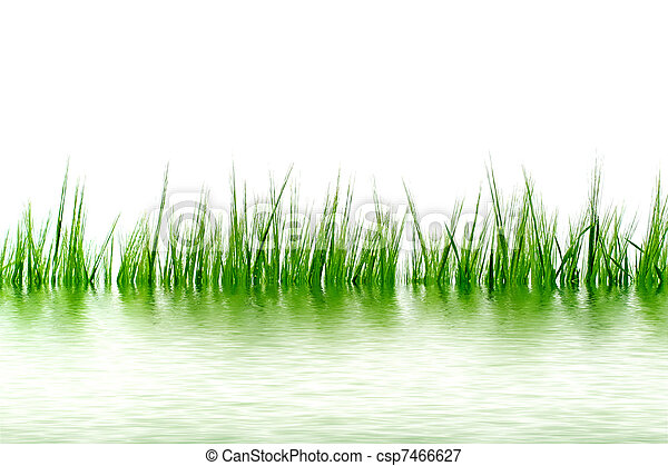 grass in the water - csp7466627