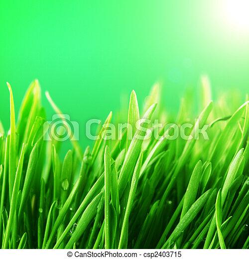 grass nature background - csp2403715