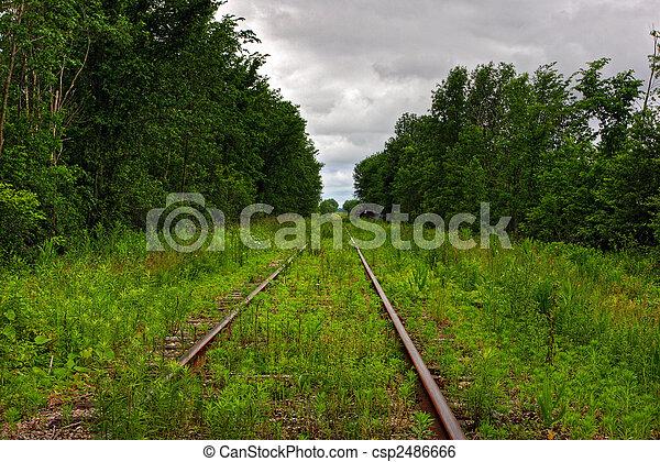 grass on a railway - csp2486666