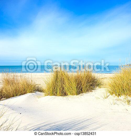 Grass on a white sand dunes beach, ocean and sky - csp13852431