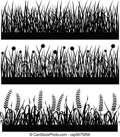 Grass Plant Flower Silhouette - csp5675956