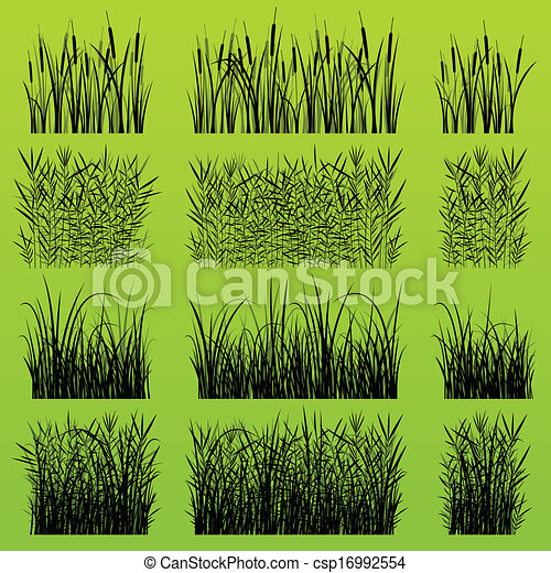 Grass, reed and wild plants detailed silhouettes illustration background - csp16992554