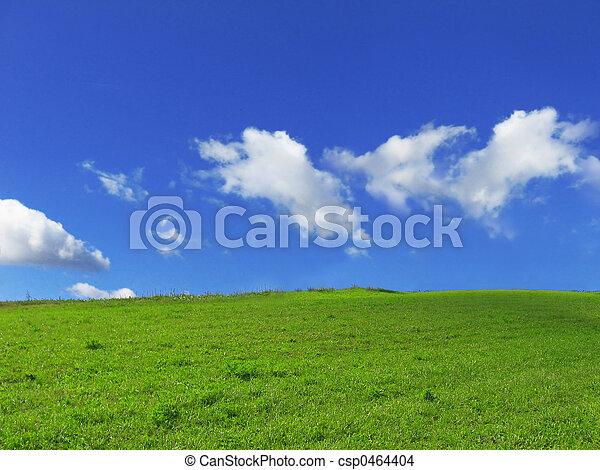 grass - csp0464404