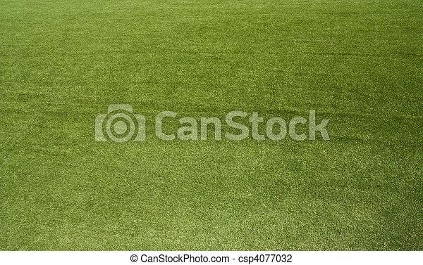 grass - csp4077032