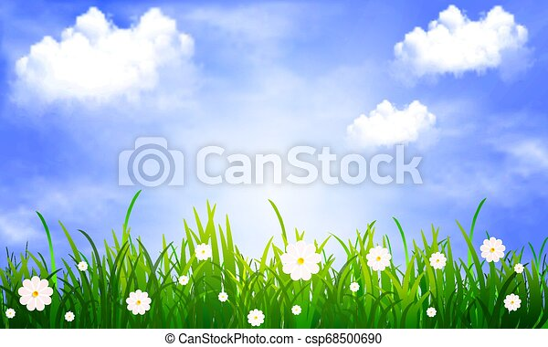 Grass with daisies on a background of blue sky with clouds - csp68500690