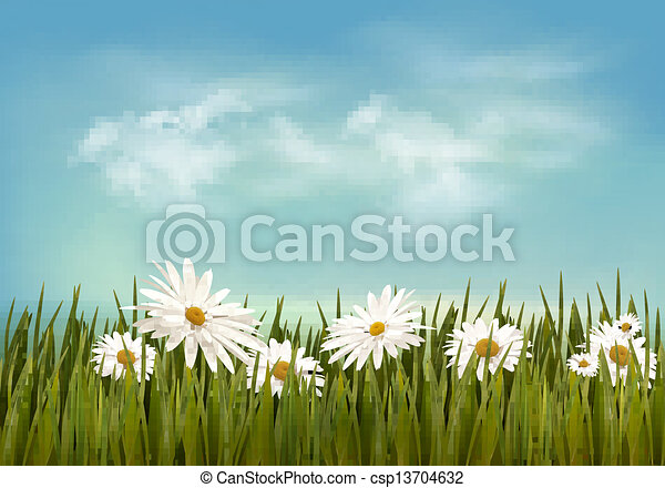 Grass with daisies under blue sky. Retro background. Vector. - csp13704632